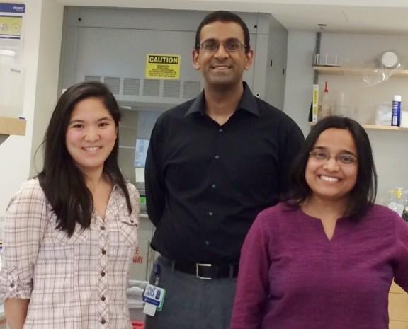 Aoi Wakabayashi, Vijay Sankaran, MD, PhD,and Anindita Basak